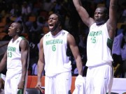 D'Tigers of Nigeria